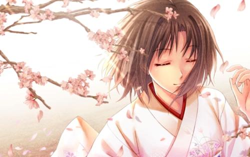 kara-no-kyoukai-ryougi-shiki-spring-sakura